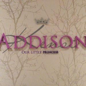 Girls Room Princess Design