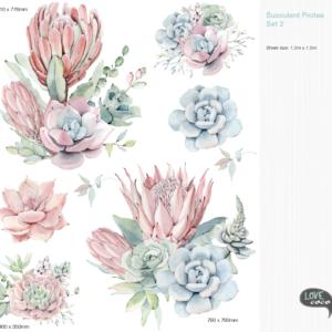 Protea Decal Set